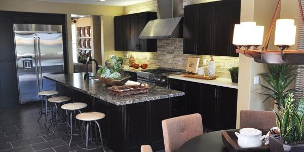 Alison Viejo Kitchen Remodel - 2